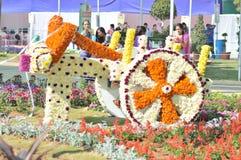 Carro da flor Fotografia de Stock