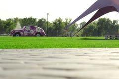 Carro da grama verde das árvores da natureza da pedra de pavimentação com flores Fotos de Stock Royalty Free