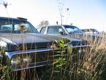 Carro da jarda de sucata Foto de Stock Royalty Free