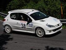 Carro da reunião de Peugeot 206 RC imagens de stock