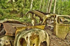Carro da sucata nas madeiras Fotografia de Stock
