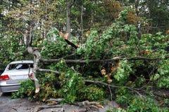 Carro danificado após a tempestade Imagens de Stock Royalty Free