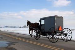 Carro de Amish Fotografia de Stock