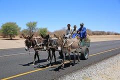 Carro de burro Imagenes de archivo