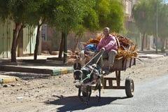 Carro de burro Fotos de archivo libres de regalías