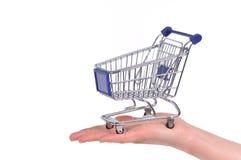 Carro de compras en una palma Imagen de archivo