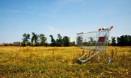 Carro de compras quebrado en la naturaleza Imagen de archivo libre de regalías