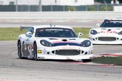 CARRO DE CORRIDAS de Ginetta G50 GT4 Foto de Stock