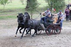 Carro de dois cavalos Imagens de Stock