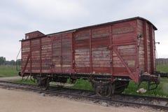 Carro de gado Imagem de Stock