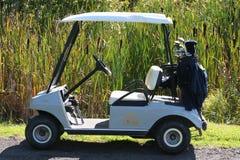 Carro de golf Fotografía de archivo