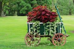 Carro de jardín colorido Fotos de archivo libres de regalías