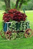 Carro de jardín colorido Imágenes de archivo libres de regalías