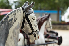 Carro de la cabeza antiguo de madera de caballo, Aviñón Imagen de archivo