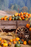 Carro de la calabaza de la cosecha Fotografía de archivo libre de regalías