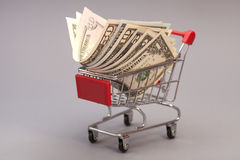 Carro de la compra con los dólares Imágenes de archivo libres de regalías