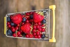 Carro de la compra miniatura con las fresas, los arándanos y redcu Imagen de archivo libre de regalías