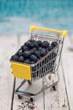 Carro de la compra miniatura con los arándanos Fotografía de archivo libre de regalías