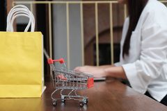 Carro de la compra de la mujer con el ordenador port?til para el concepto que hace compras en l?nea de Internet foto de archivo