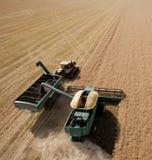 Carro de la cosechadora y del grano Foto de archivo libre de regalías