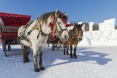 Carro de la nieve del invierno Imagen de archivo