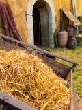 Carro de la paja, perteneciendo a un rato medieval Fotos de archivo