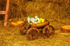 Carro de madeira com flores e frutos no feno foto de stock