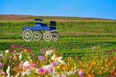 Carro de madera azul en Boon Rawd Farm Foto de archivo libre de regalías