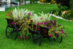 Carro de madera con las flores del verano Foto de archivo
