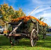 Carro de madera de la vieja rareza para un caballo fotos de archivo