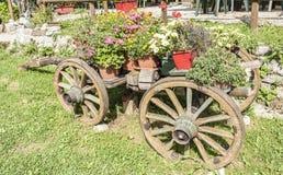 Carro de madera viejo con los crisoles de flores Imágenes de archivo libres de regalías
