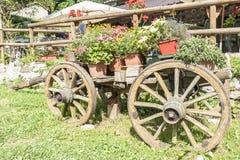 Carro de madera viejo con los crisoles de flores Imagen de archivo