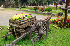 Carro de madera viejo por completo de flores Imagen de archivo libre de regalías