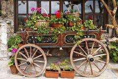 Carro del buey con las flores Fotos de archivo