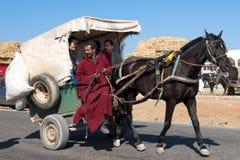 Carro del burdégano Imagen de archivo libre de regalías