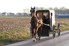 Carro del caballo de Amish fotos de archivo