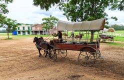 carro del caballo de montar a caballo de la demostración de la autoridad imagen de archivo