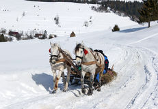 Carro del caballo del pueblo del invierno Imagenes de archivo