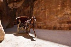 Carro del caballo en el barranco de Siq, Petra, Jordania Foto de archivo libre de regalías