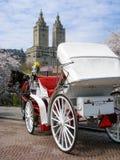 Carro del caballo, rascacielos, Central Park, Nueva York imagen de archivo libre de regalías