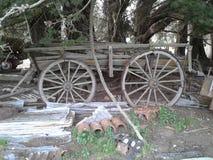 Carro del vintage debajo de árboles Foto de archivo