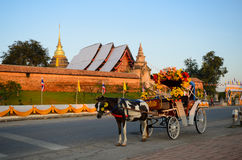 Carro do cavalo Imagem de Stock Royalty Free
