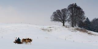 Carro do cavalo na paisagem do inverno que conduz completamente Fotos de Stock Royalty Free