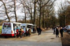 Carro do gelado Imagens de Stock Royalty Free