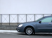 Carro do negócio Imagem de Stock