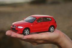 Carro em uma palma Imagem de Stock Royalty Free