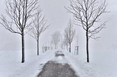 Carro em uma tempestade de neve Imagens de Stock
