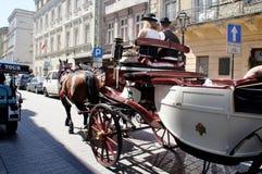 Carro Horse-drawn Imagem de Stock
