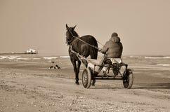 Carro Horse-drawn Fotos de Stock Royalty Free
