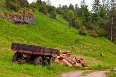 Carro, madera y cabra Imagenes de archivo